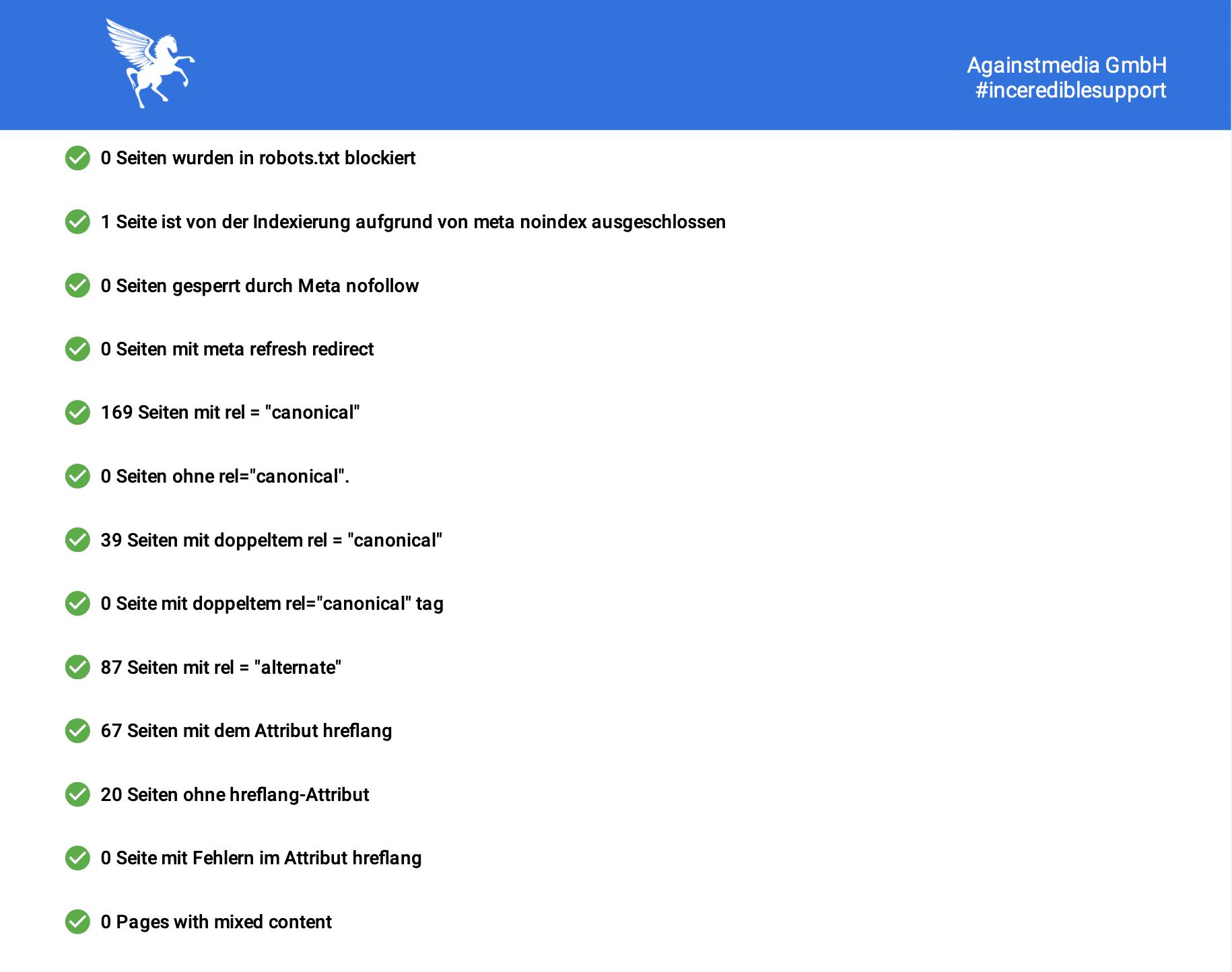 Eine weitere Seite des Website Audit mit diversen Unterpunkten